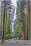 SWAOOS Puzzles 1000 Piezas de Madera Rompecabezas Parque Nacional de Yosemite California Dog Yosemite Falls atravesando un Coche árbol Miniatura diypara Adultos cartón Resistente desafío