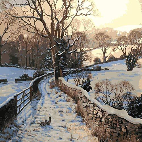Malen Nach Zahlen Schöne Winterlandschaft20 × 24