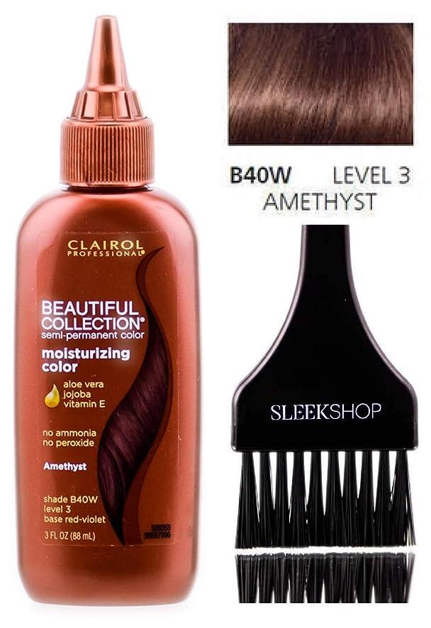 Clairol BEAUTIFUL COLLECTION Moisturizing SEMI-PERMANENT Hair Color (w/Sleek Tint Brush) No Ammonia No Peroxide Haircolor Aloe Vera Jojoba Vitamin E (B40W - Amethyst)