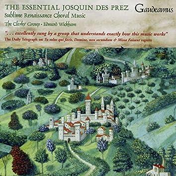 The Essential Josquin Des Prez
