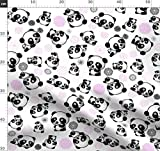 Panda, Pandas, China, Chinesisch, Pandabär, Orientalisch,