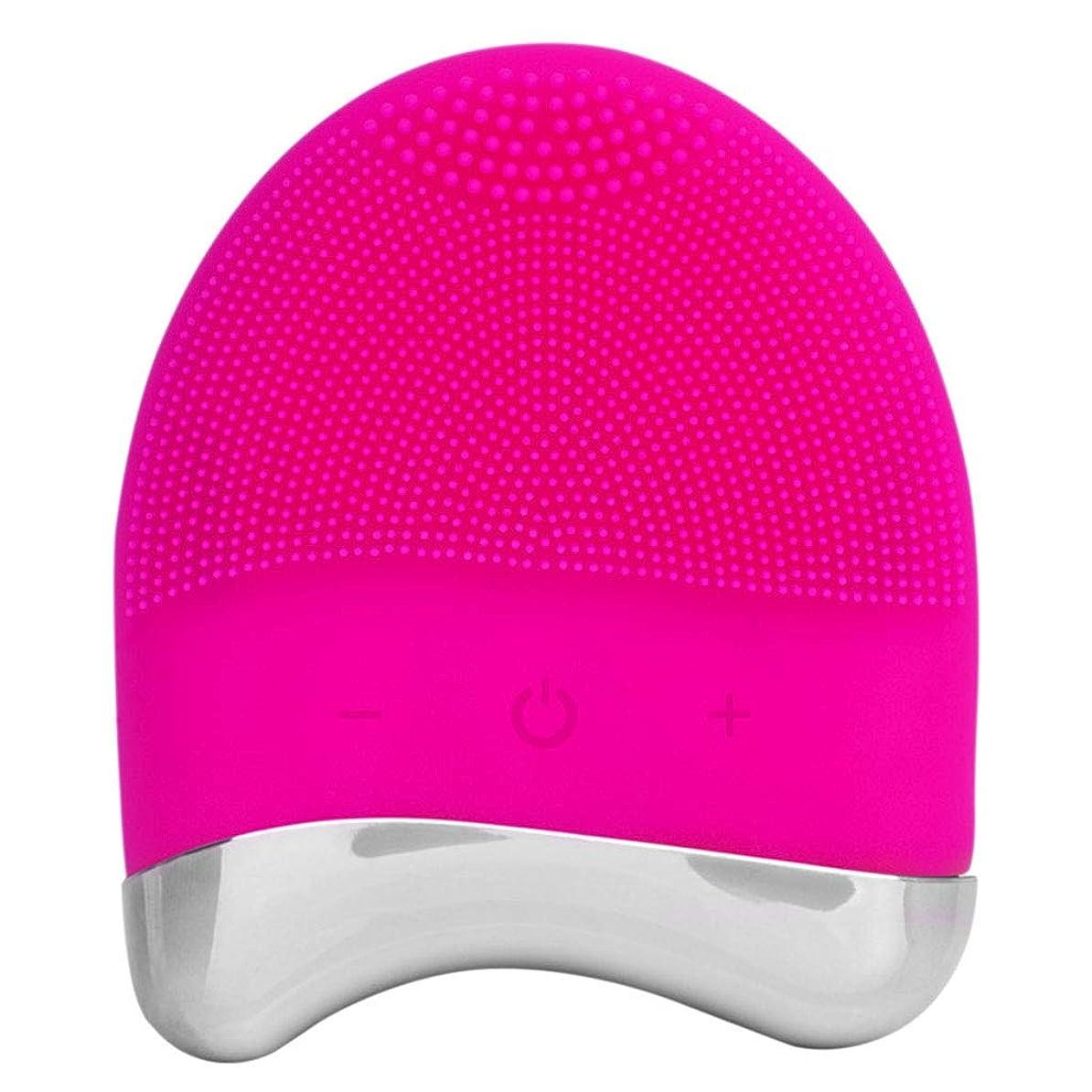 引き付けるハッチ忘れるソニック洗顔ブラシ、電気シリコーンフェイスマッサージャー防水、アンチエイジングスキンクレンジングシステムとディープエクスフォリエーター