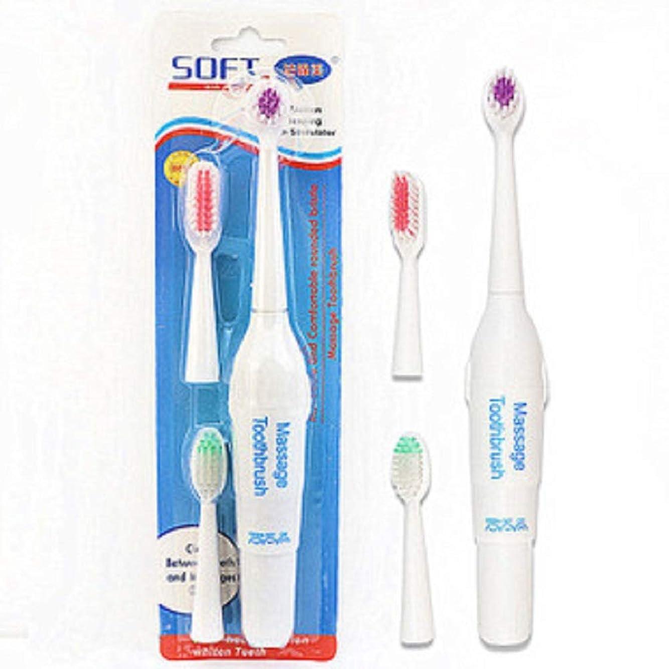 偽ローンこするペット電動歯ブラシ犬猫電動歯ブラシ、バッテリーなし(ハンドルフォントはランダムに3色で送信されます)(ホワイト)