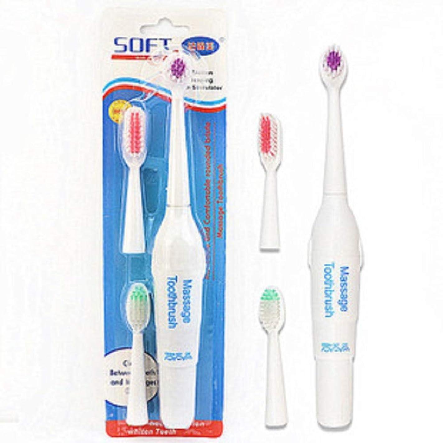 絶対に雑多なコミットペット電動歯ブラシ犬猫電動歯ブラシ、バッテリーなし(ハンドルフォントはランダムに3色で送信されます)(ホワイト)