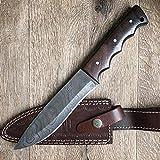 Hobby Hut HH-401, cuchillo de acero de Damasco de 11.5 pulgadas Bushcraft | Cuchillo de caza | Funda de cuero | Full Tang| Cuchilla afilada para cuchilla de afeitar para exteriores