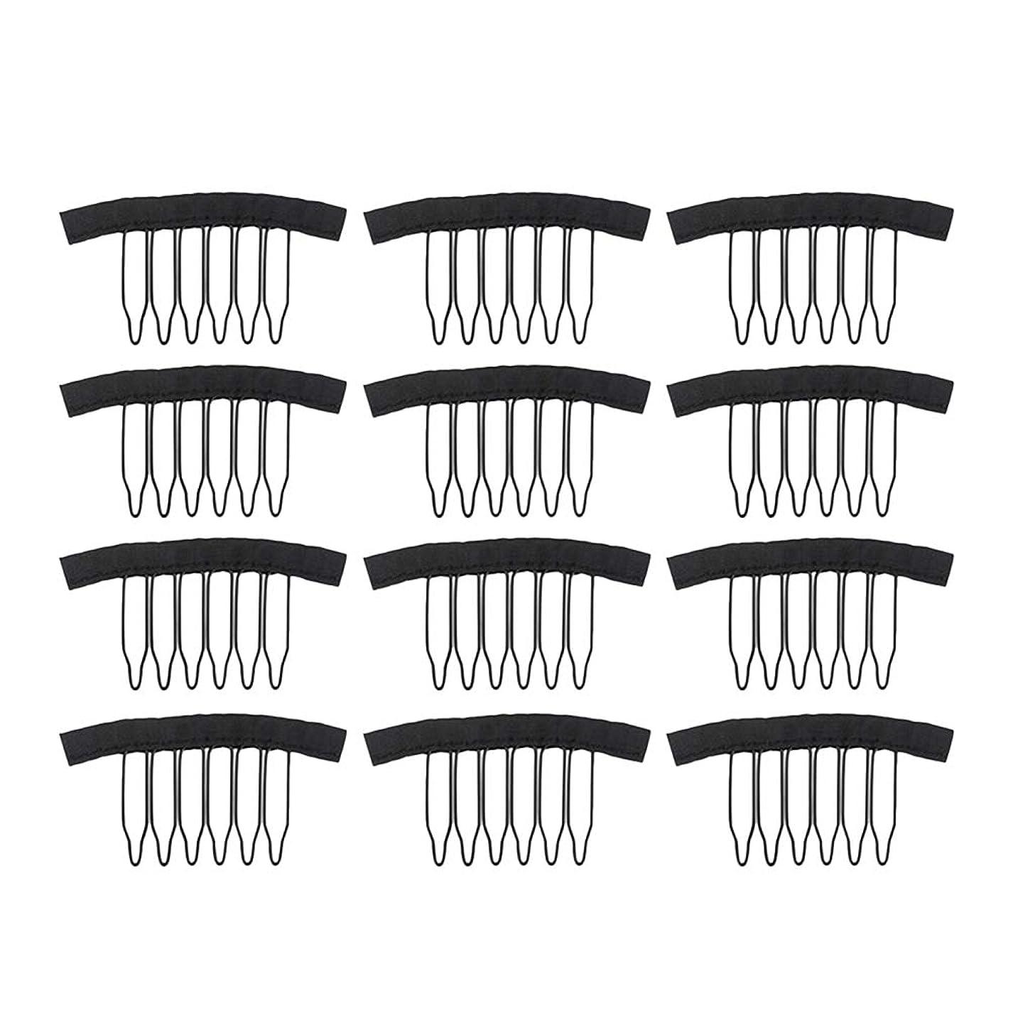 アンカー施設車両Frcolor 12PC ウィッグ かつらピン ウィッグネットキャップクリップステンレススチール 女性用ウィッグアクセサリー(ブラック)