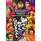 音楽ガッタス ファーストコンサートツアー2008春~魅ザル 祝ザル GOODSAL!~ [DVD]