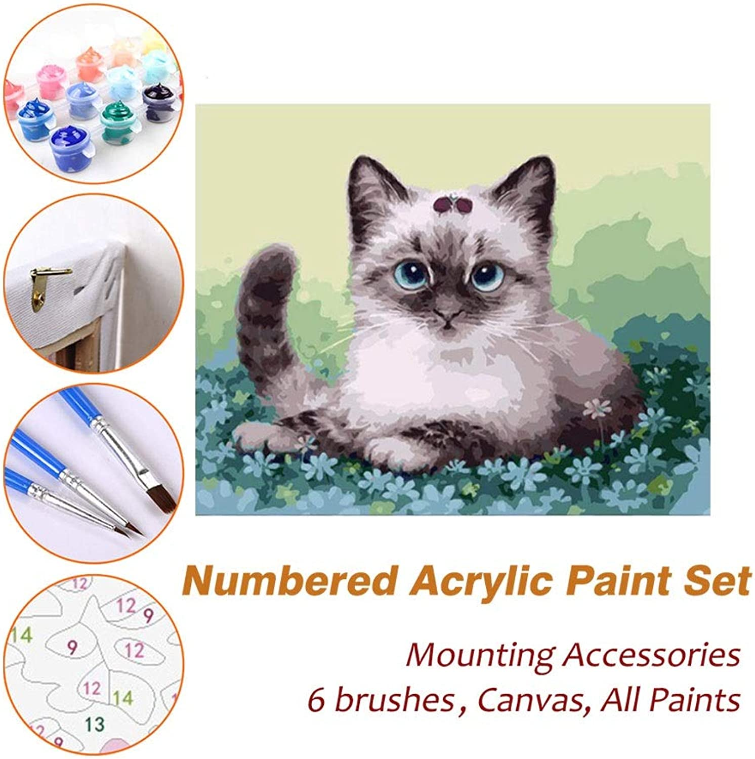 Puzzle House Paint Max Acrylic Oil Painting Paint By Numbers Kits Sets with Frame For Kids Adults Beginner Artist, The Cute Cat DIY Wall Art Picture Photography Brush Supplies 610