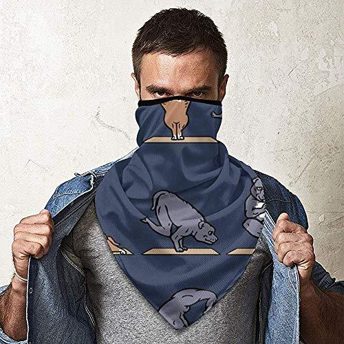 WCUTE Pit Bull Terrier Yoga Magic Headwear Foulard Bandanas Moto Bandeaux Multifonctionnel Tube Écharpe Neck Gaiter Caps