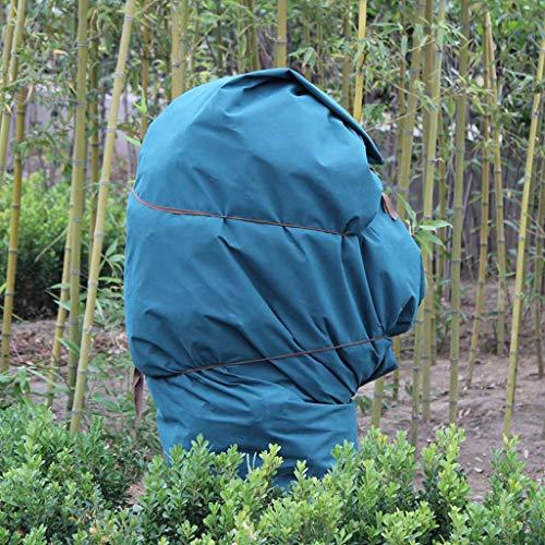 Gardening tools - plant cover Tissu Isolant Anti-Gel pour Plantes d'hiver (Couleur : 1 * 100m)