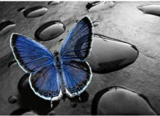 WANGJRU Diy 5D Diamond Home Decoration Embroidery Art Painting Butterfly Fairy Picture Cross Stitch Full Square Drill Gift...