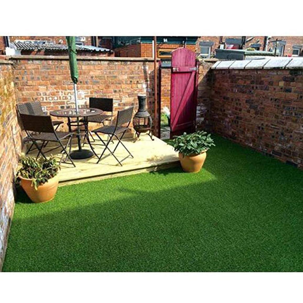きゅうりブランデー悪い高密度 人工芝マット,排水の穴 25 Mm 現実的 合成芝生 厚く ターフマット テラスのため バルコニー ペットターフ-グリーン 200x650cm(79x256inch)