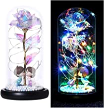 HANGQINGHENG Tinsel Rose with LED Lamp Forever Rose Lamp Couples Decorate Small Night Lights As Romantic Gifts for Christm...