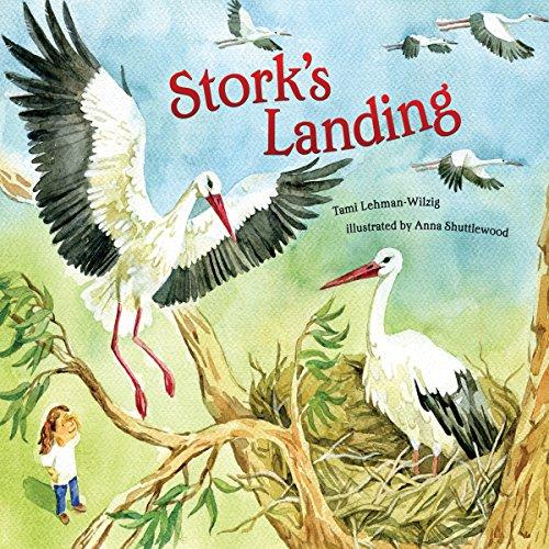Stork's Landing copertina