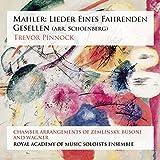 Lieder Eines Fahrenden Gesellen: Mahler, Wagner...