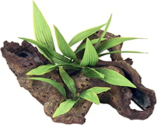 Exotic Environments Mopani Wood with Silk Style Plants