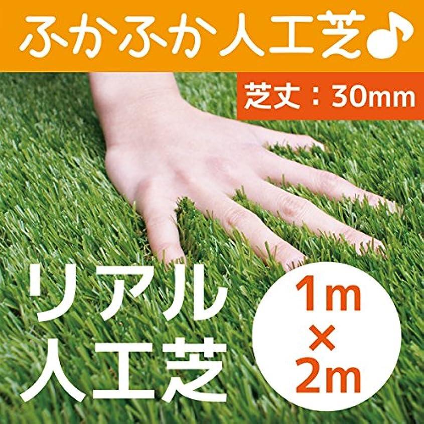 レポートを書く熟したする必要があるまるで本物のような質感 ふかふかで気持ちがいい人工芝 芝丈30mm 1m×2m リアル人工芝 DAIM マット ロール式 芝生