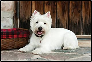 Dog Breed Doormat Animal Door Mat 68x45cm - West Highland White Terriers