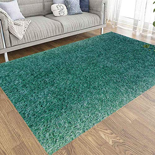Liz Carter 36X24in Area Rug Door Mat Durable Carpet Absorbs Water Floor Mat Surface Grass Aqua Tone