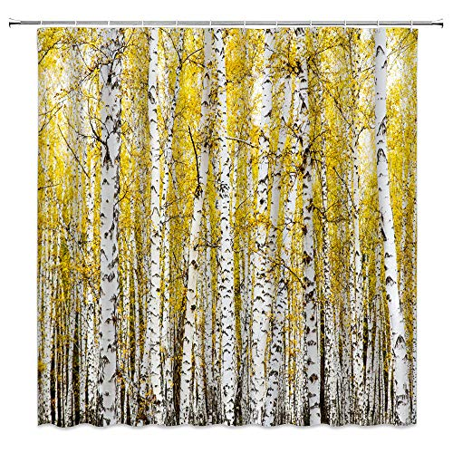 """XZMAN Birch Tree Shower Curtain Fall Forest Autumn Birch Trunk Woodland Yellow Leaves Nature Art Picture Home Decor Polyester Waterproof Bathroom Decor Set with Hooks,(70"""" WX70 H)"""
