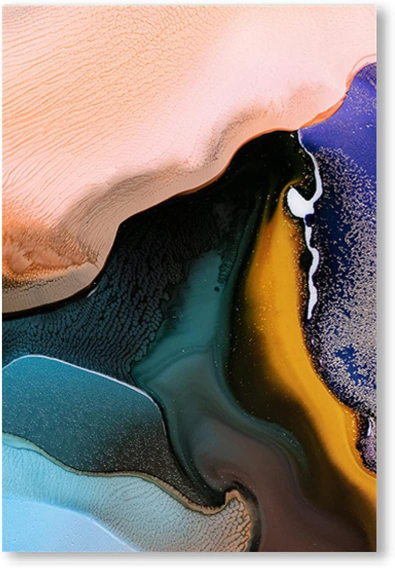 Colorful Canvas Wall Art Abstract Poster Painting Pri Ranking Max 50% OFF TOP12 ink