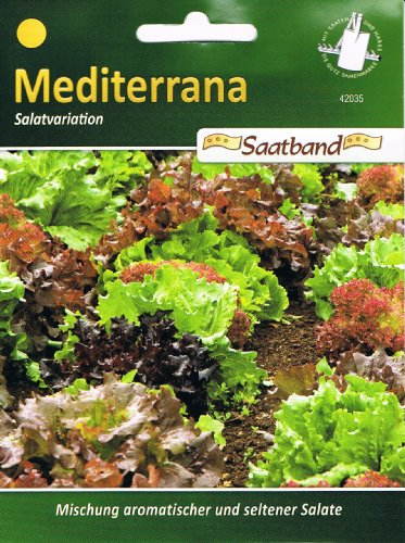 Mediterrane Salatvariation Saatband Salat 42035