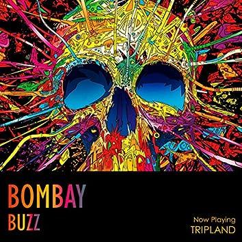 Tripland (feat. Bombay Buzz)