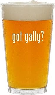 got gally? - Glass 16oz Beer Pint