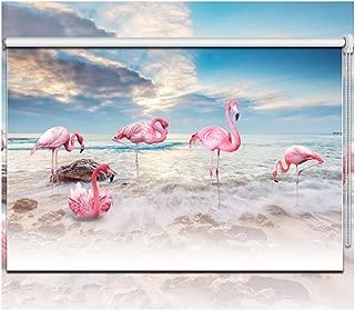 LIQICAI Tenda A Rullo Doppio Giorno E Notte Oscurante Avvolgibile Controllo della Luce Puro O Privacy Stampa Reattiva HD Montaggio Interno O Esterno Color : A, Size : 51X150cm