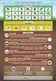 'What Can Red Wigglers Eat?' Infographic Refrigerator Magnet for Live Red Wiggler Worm Composting Bins - An Essential Accessory to Any Worm Farm Starter Kit - Perfect For Kids & Adults