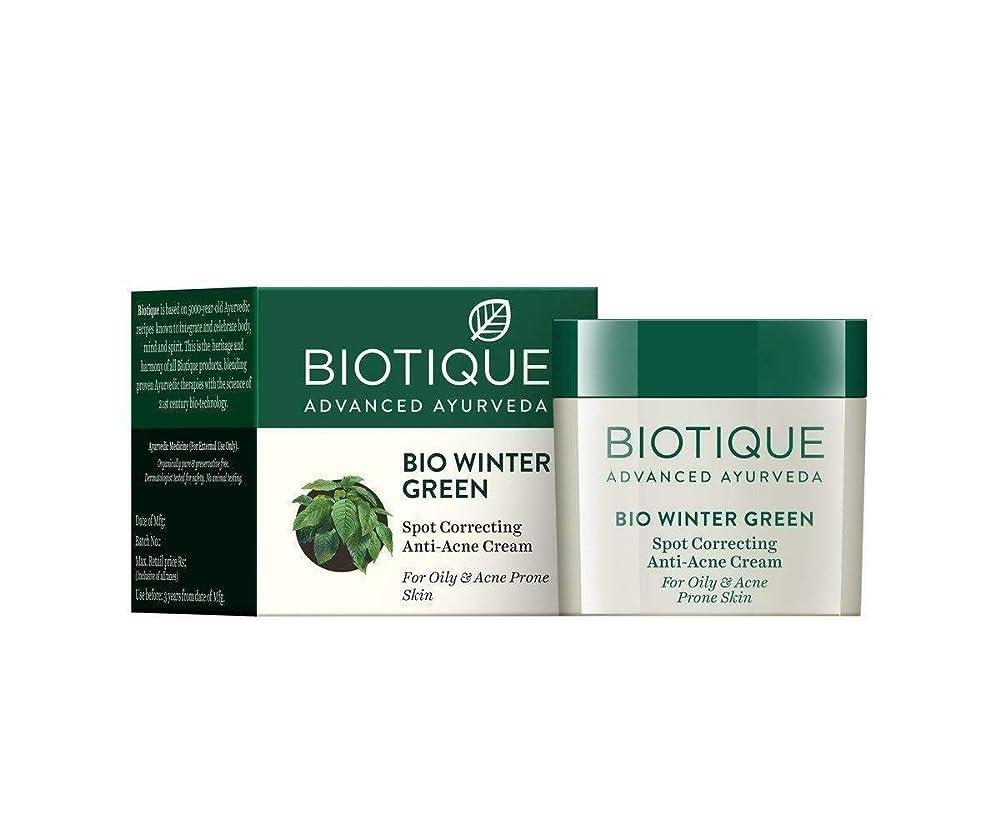 一生間欠ケーキBiotique Bio Winter Green Spot Correcting Anti Acne Cream 15g For Oily Skin 油性肌のための抗にきびクリームを修正するBiotiqueバイオ冬の緑の斑点