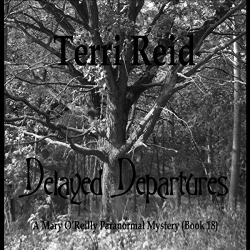 Delayed Departures audiobook cover art