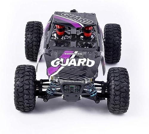 Sguan-wu 2,4 GHz 1 14 Fernbedienung High Speed RC Rennwagen Modell Kinder Spielzeug Geschenk Purple
