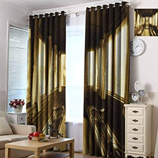 hengshu Antique Blackout Curtains - Gasket Insulation Old Vintage Train Salon Inside Historical Transport Windows with Curtains Arch Shape Blackout Curtains for The Living Room W55 x L72 Inch Sepia