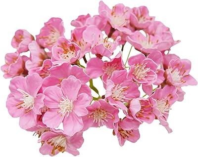 グランプラス サボン ドゥ フルール 桜 房 2房BOX ブライダルピンク プリザーブドフラワー 花材 H20mm・W37mm