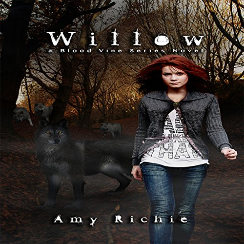 Willow cover art