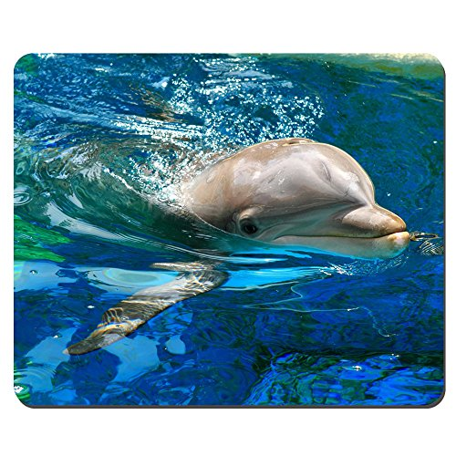Thick 4mm Gaming Mouse Pad - Personality Mouse Pads with Design - Non Slip Rubber Mouse Mat (Dolphins)