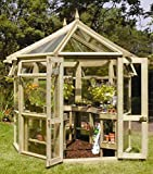 Jardín Verde - Invernadero Octagonal de Madera 'Edwardian'. Cristal Resistente de 4mm. Dimensiones: h3,1m x 3,7m x 2,7m
