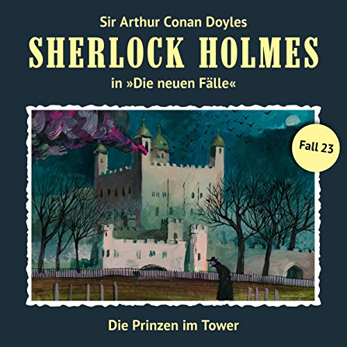 Die Prinzen im Tower audiobook cover art