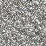 Confectionery Arts Jewel Dust Food-Grade Powder Color - Silver, 4 Grams