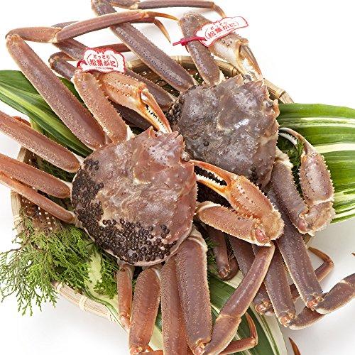 日本海市場 タグ付き特上松葉ガニ(ズワイガニ)姿 小サイズ2枚(活2枚で800g前後)「本物」の松葉ガニを産地直送でお届けします