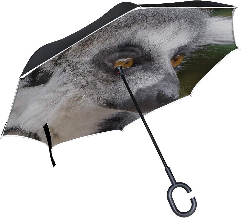 Rh Studio Ingreened Umbrella Lemur Wildlife View Large Double Layer Outdoor Rain Sun Car Reversible Umbrella
