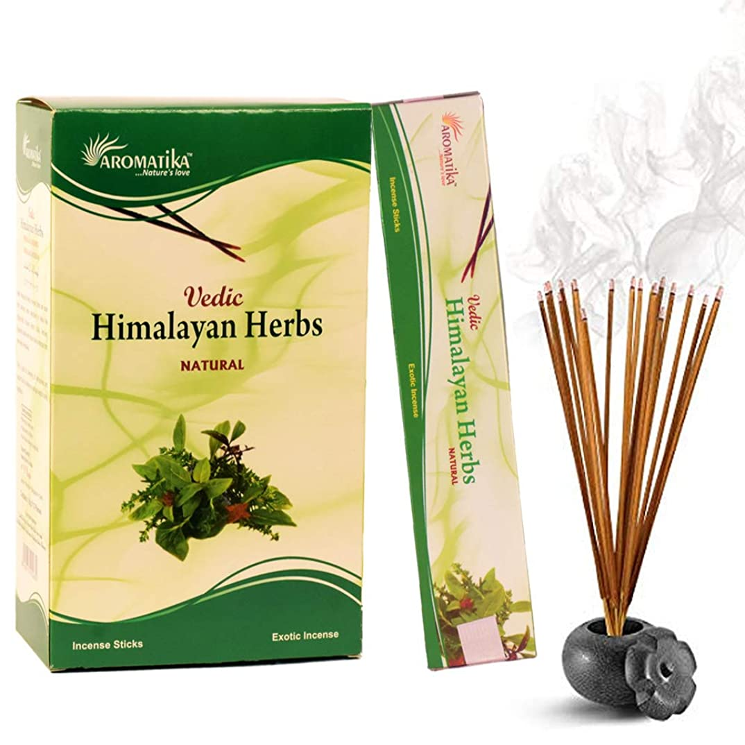 太陽叱る同一性aromatika Himalayan Herbs 15?gms Masala Incense Sticks Pack of 12