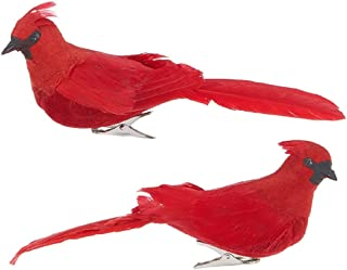 Best RAZ Imports - 7-inch Clip-On Cardinal Ornaments - Set of 2 Assorted Review
