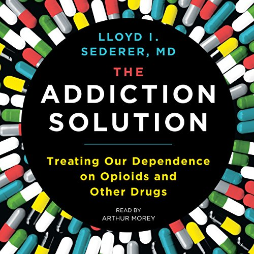 The Addiction Solution audiobook cover art