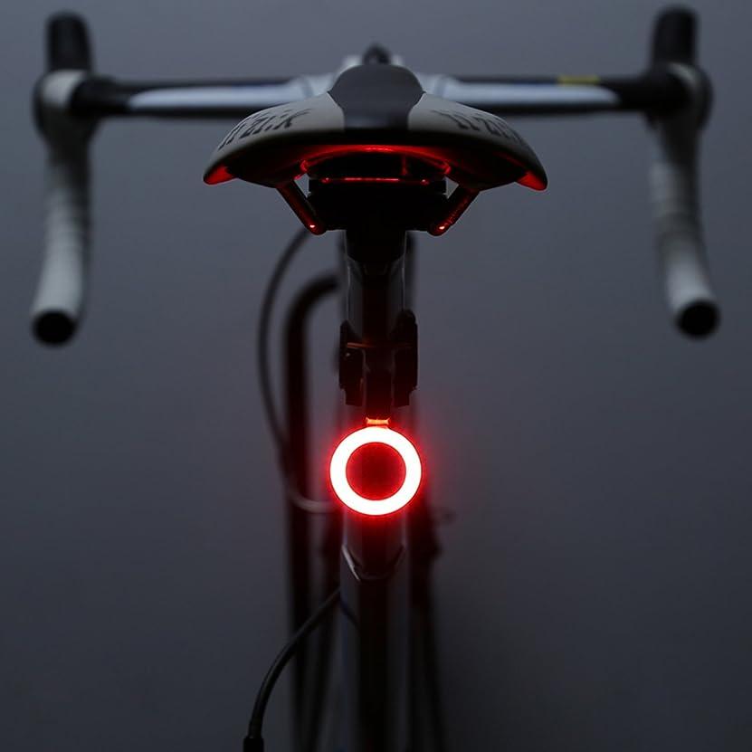 南東考えみなすOUTERDO 自転車 テールライト USB充電式  防水仕様 セーフティライト リアライト LEDライト軽量 高輝度 5モード 小型 防水 簡単装着 夜間走行 ロードバイク マウンテンバイク 小型自転車 自転車 テールランプ led usb リアキャリア向けテールライト