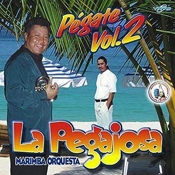 Pégate Vol. 2. Música de Guatemala para los Latinos