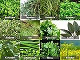 Mischung/Mix/Set'Kräutergarten/Küchenkräuter' 12 x Samen der beliebtesten Kräuter aus Portugal / 100% Natur Oregano Thymian Majoran Rosmarin Dill Basilikum Salbei