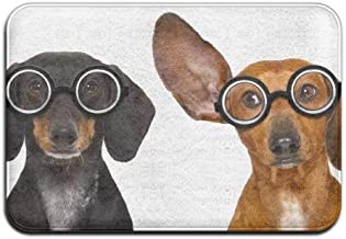 Couple of Dumb Silly Dachshund Sausage Dog Wearing Funny Nerd Glasses Isolated On White Front Door Mat Large Outdoor Indoo...