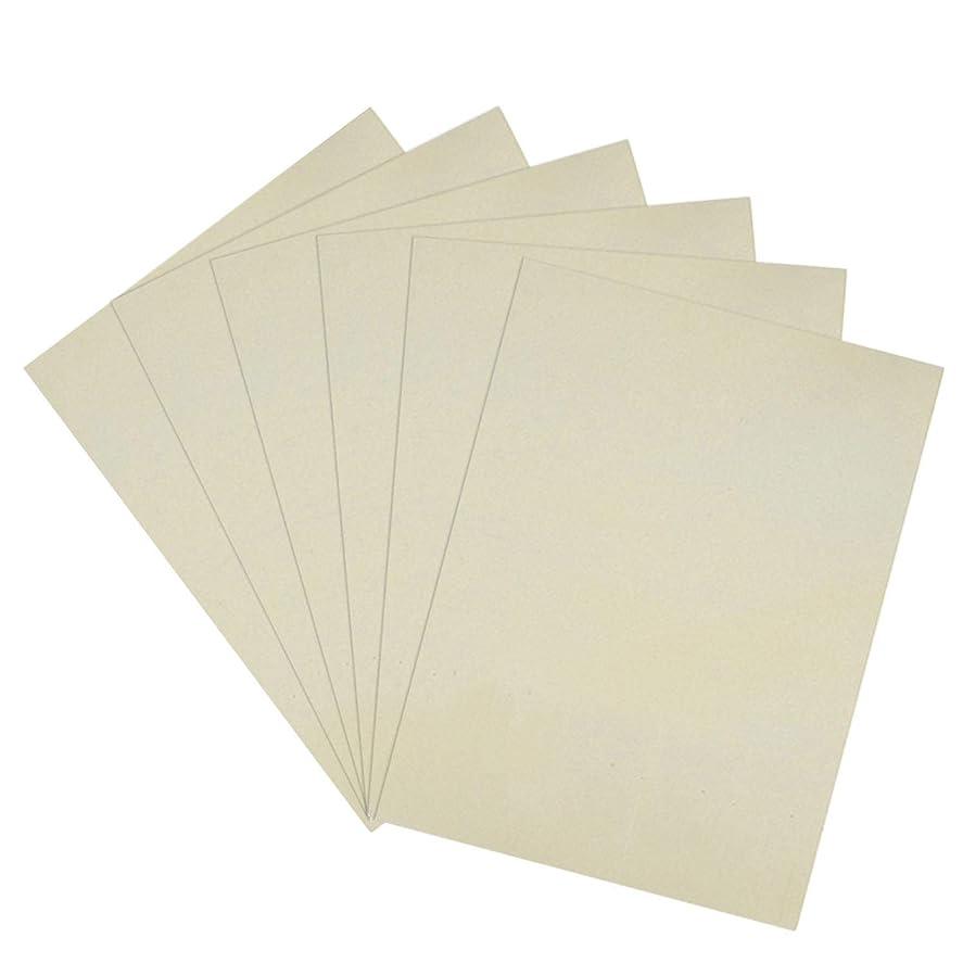 浸透するシガレット枯渇Migavann 5枚スキンの練習の空白のシリコーンの永久的な構造の入れ墨の訓練の練習の擬似皮